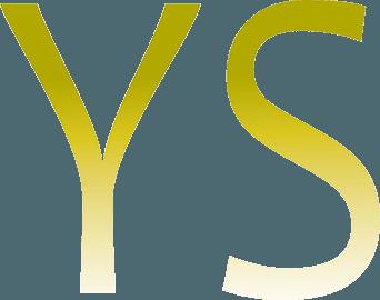 Schriftzug YS